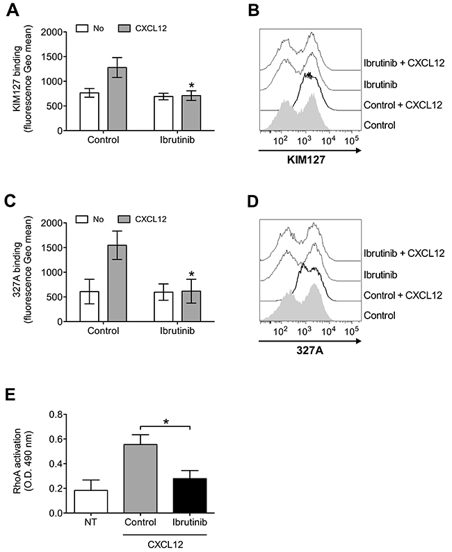 BTK mediates LFA-1 affinity triggering and RhoA activation by CXCL12 in healthy B-lymphocytes.