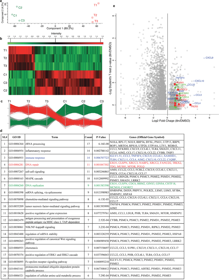 RNA sequencing of DIAP cells shows up-regulation of genes involved in DNA repair, DNA replication and immune response.