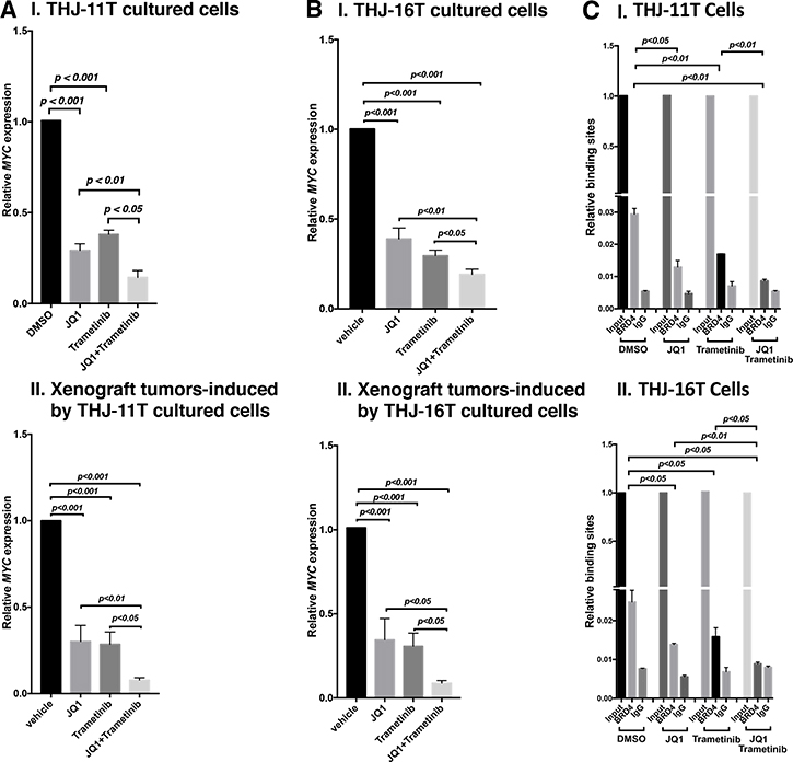 The combined treatment of JQ1 and trametinib synergistically decreased the MYC mRNA expression in ATC cell lines and tumors.