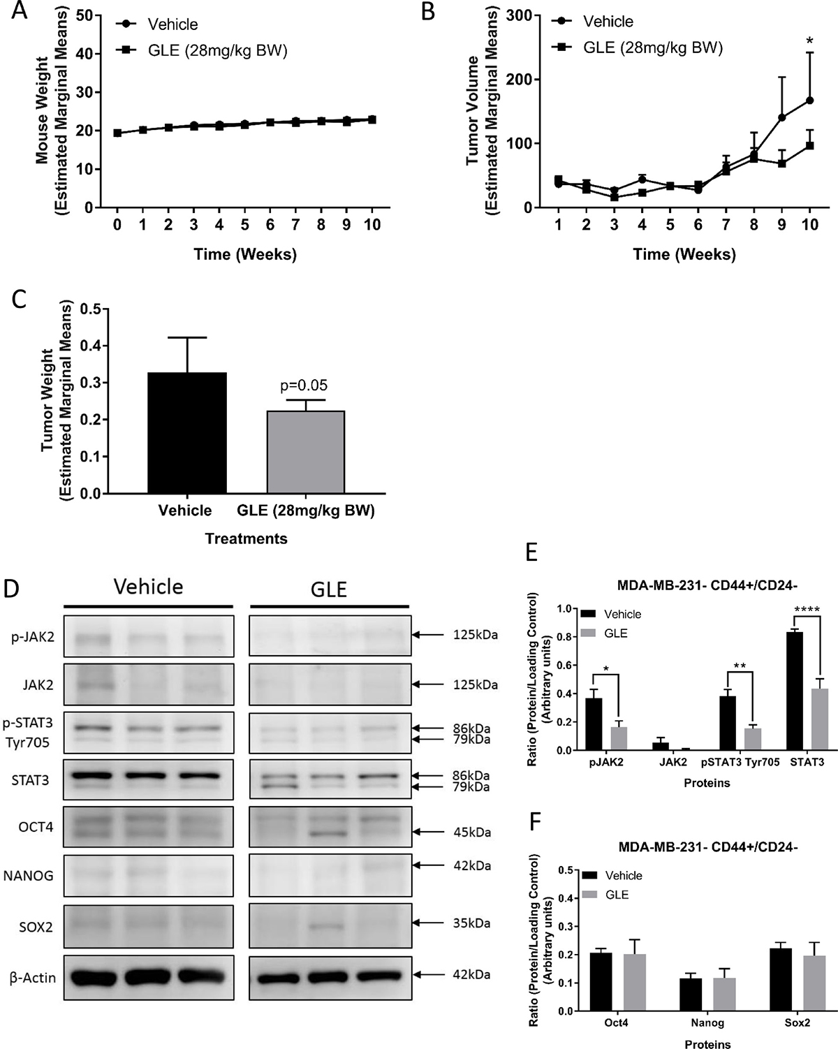 GLE decreases CD44+/CD24– tumor growth and inhibits the STAT3 signaling pathway in vivo.
