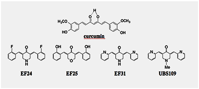 Chemical structures of the monocarbonyl analogs of synthetic curcumin (MACs), EF24, EF31, and UBS109.