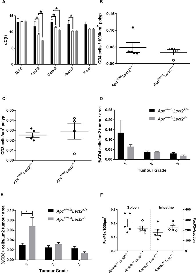 Lect2 regulates the expression of lineage-specification factors in the spleen.