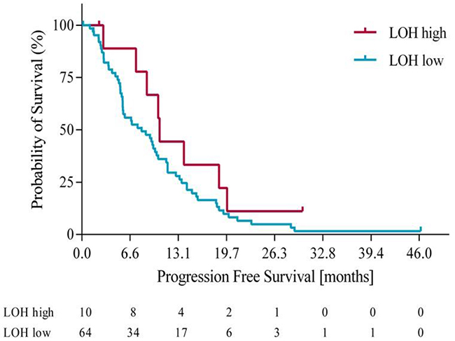 Progression free survival in LOH-high and LOH-low groups.