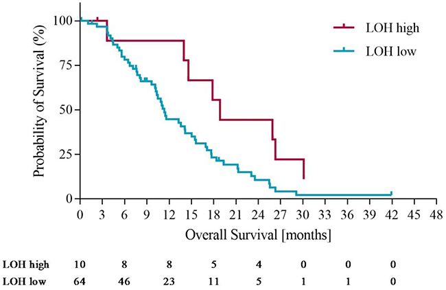 Overall survival in LOH-high and LOH-low groups with operated patients censored at time of potentially curative surgery.