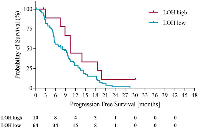 Progression free survival in LOH-high and LOH-low groups with operated patients censored at time of potentially curative surgery.