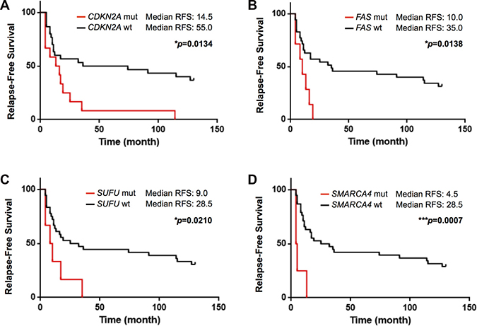 Kaplan–Meier curve of relapse-free survival according to mutational status in this study.