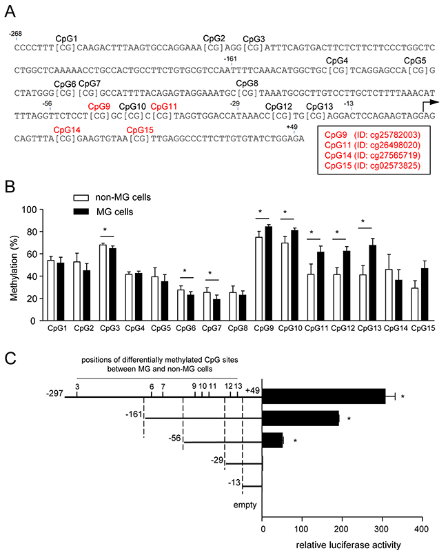 Methylation of CpG sites in the ZNF350 promoter.