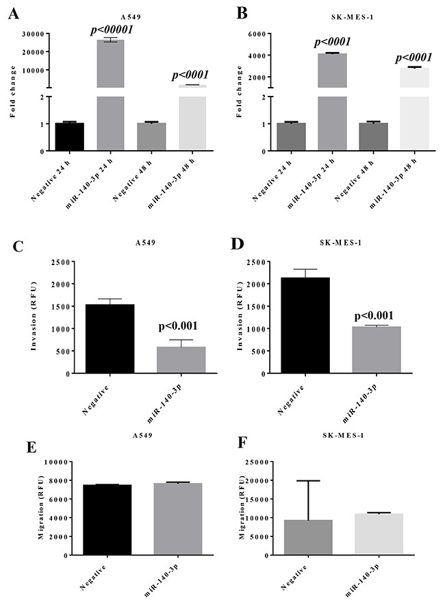 Change of miR expression and invasion properties in lung cancer cells after transfection with miR-140-3p mimic.