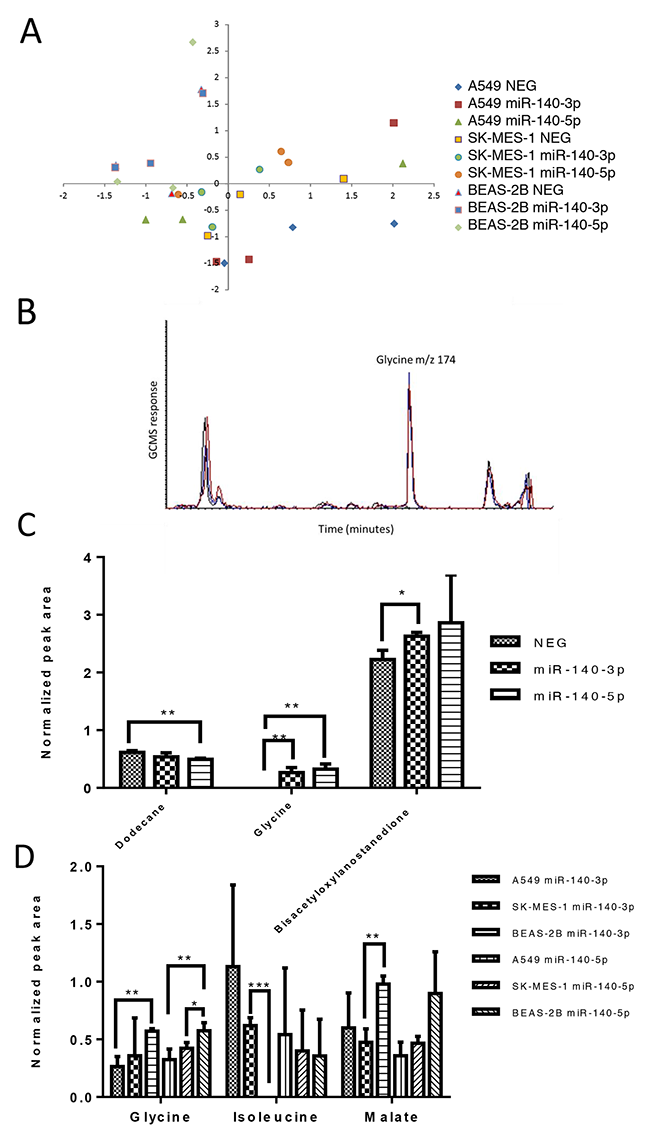 The two strands of miR-140 have minor impact upon the metabolite profile of lung cancer cells.