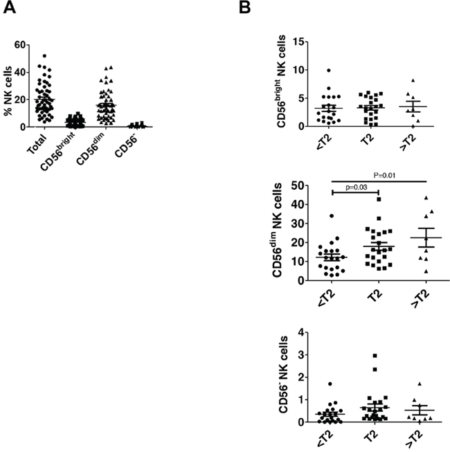 CD56dim NK cells are increased in higher stage bladder tumors.