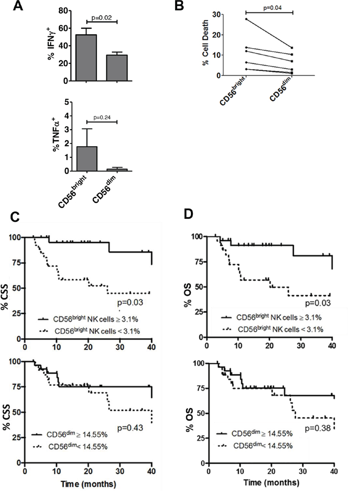 Intratumoral CD56bright NK cells are more functional than CD56dim NK cells and correlate with survival in bladder cancer.