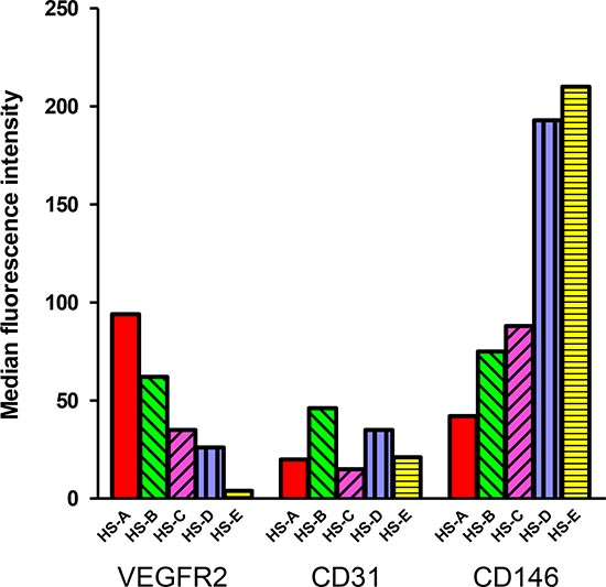 Expression of endothelial markers in hemangiosarcomas.
