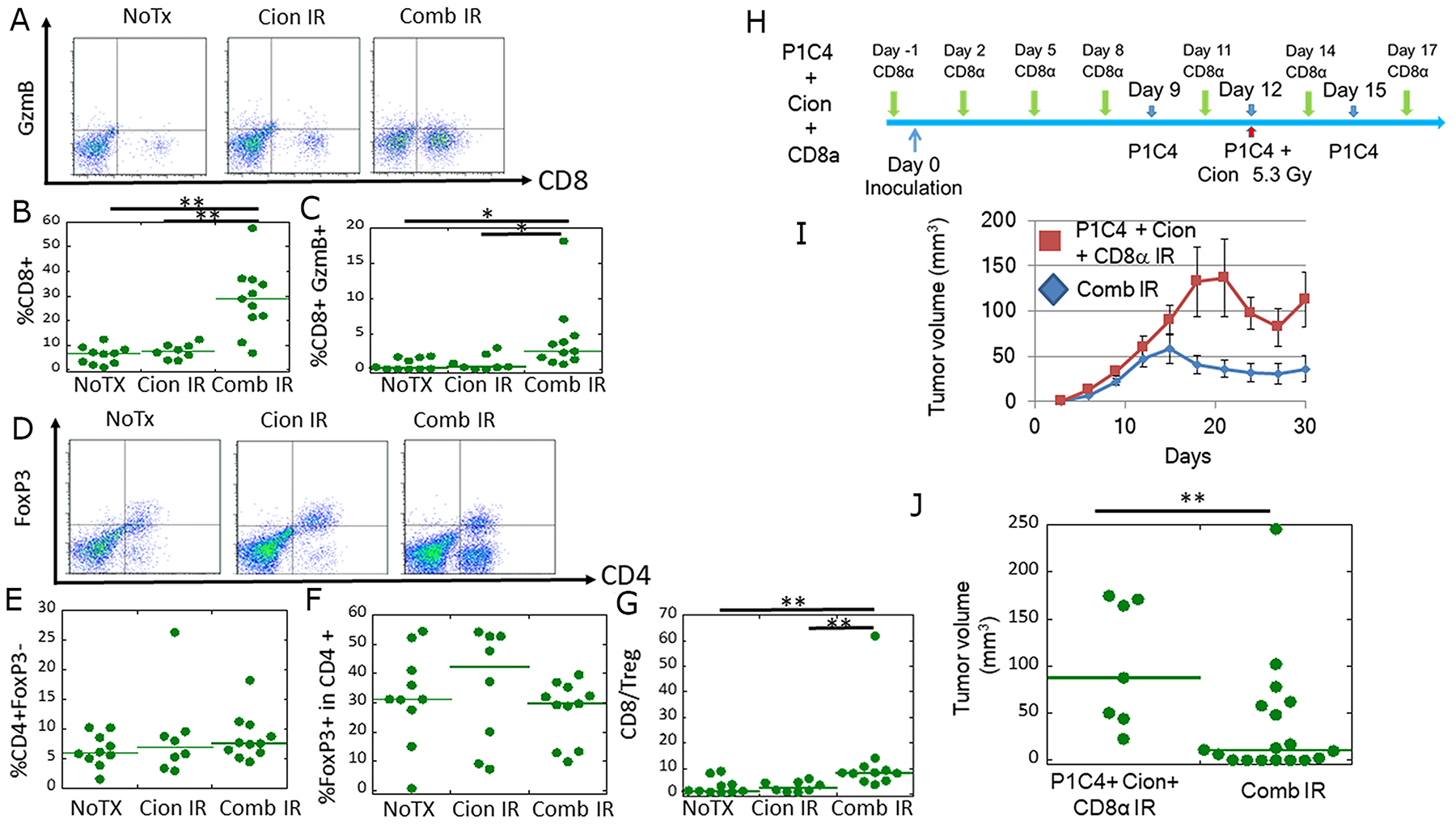 Analysis of CD8+/GzmB+ cells and CD4/Foxp3+ cells in tumor-infiltrating lymphocytes (TILs), and the antitumor immune response at a local site.