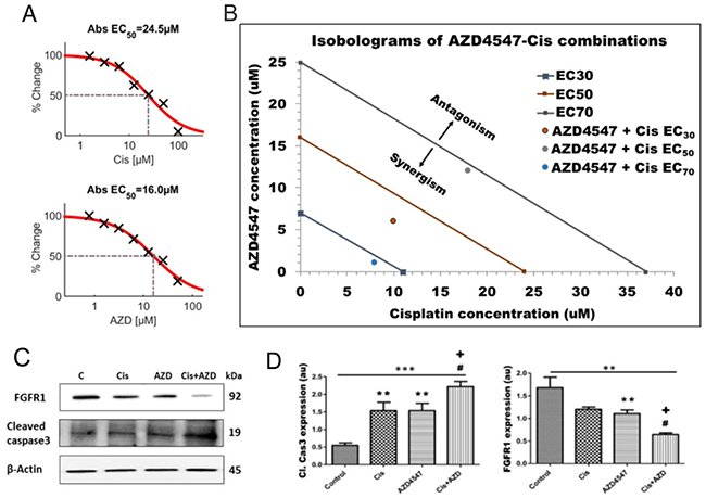 Synergistic effect of AZD4547 and cisplatin on LGACC cell viability.
