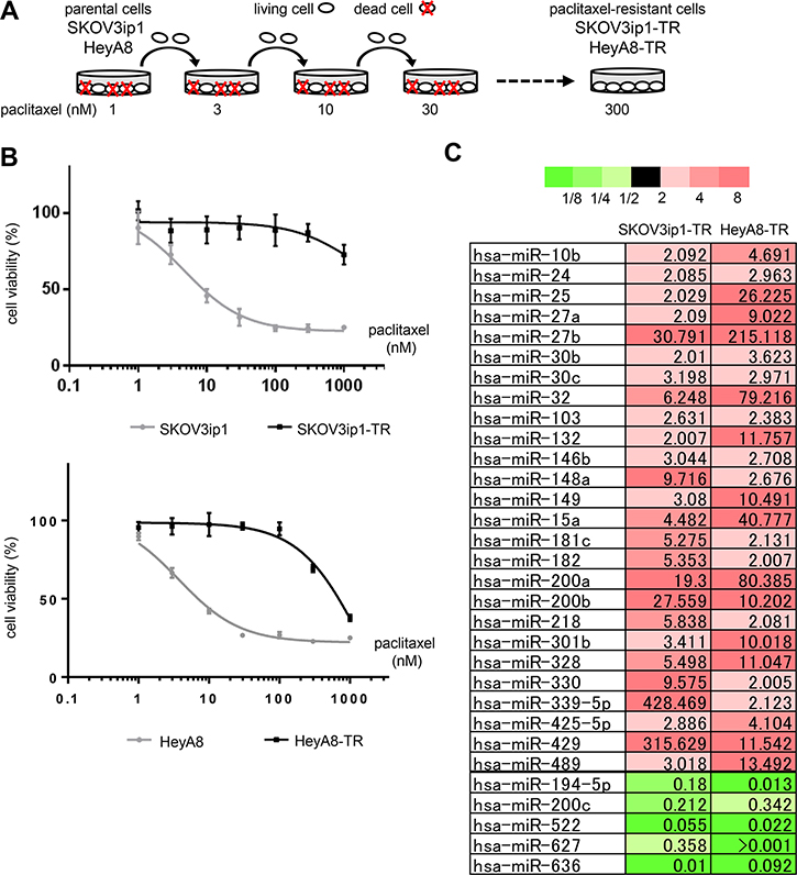 miR-194-5p is downregulated in paclitaxel-resistant ovarian cancer cell lines.