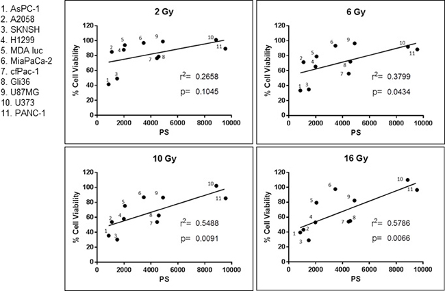 Correlation between cancer cell surface phosphatidylserine (PS) and resistance to radiation.