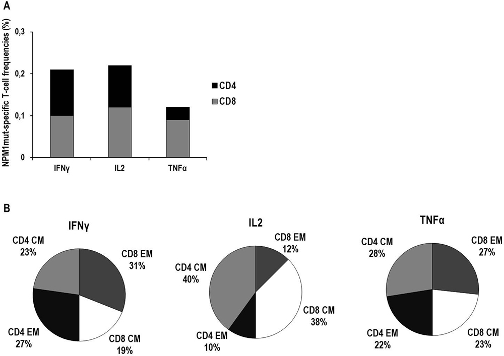 Characterization of cytokine production and memory T-cell profiles of NPM1-mutated specific T cells by cytokine secretion assay (CSA).