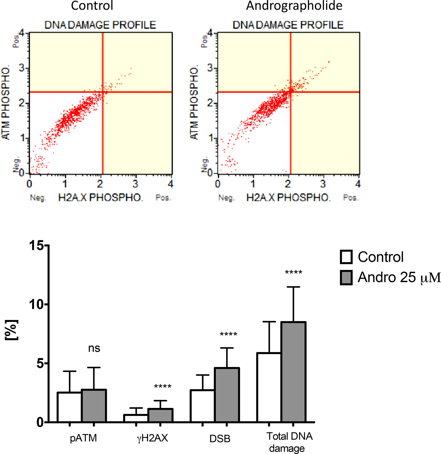 Andrographolide increases DNA damage in PC3 cells.