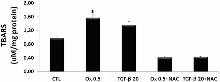 Evaluation of reactive oxygen species in vitro.