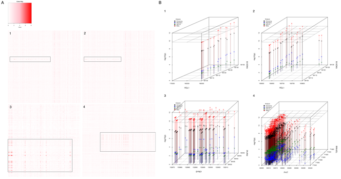 Imputed genetic interaction analysis in candidate regions.