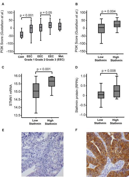 PI3K mRNA signature score and Stathmin protein expression.