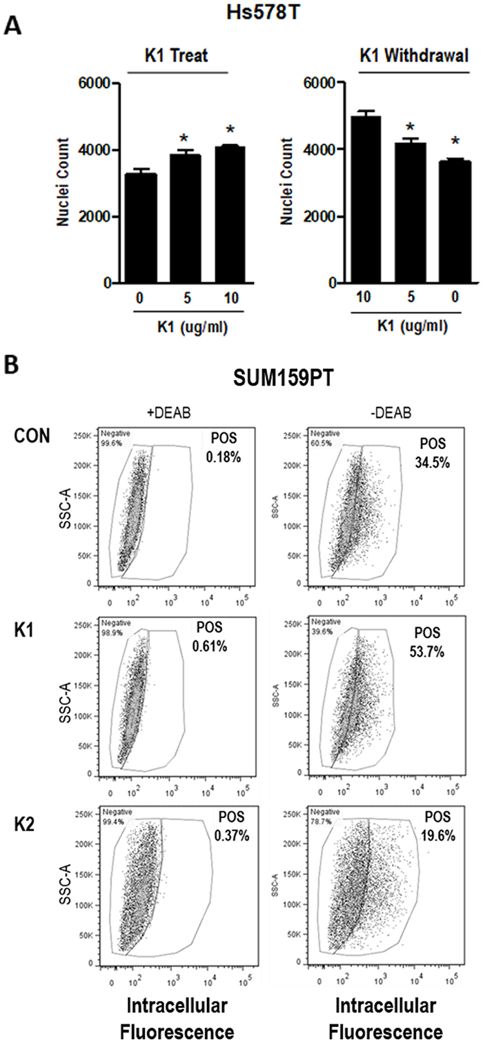 Effect of K vitamins on TNBC cell density and ALDH+ population.