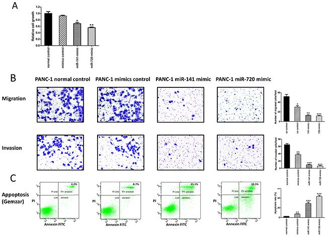 MiR-141 and miR-720 inhibits the tumorigenesis of PANC-1 cells.