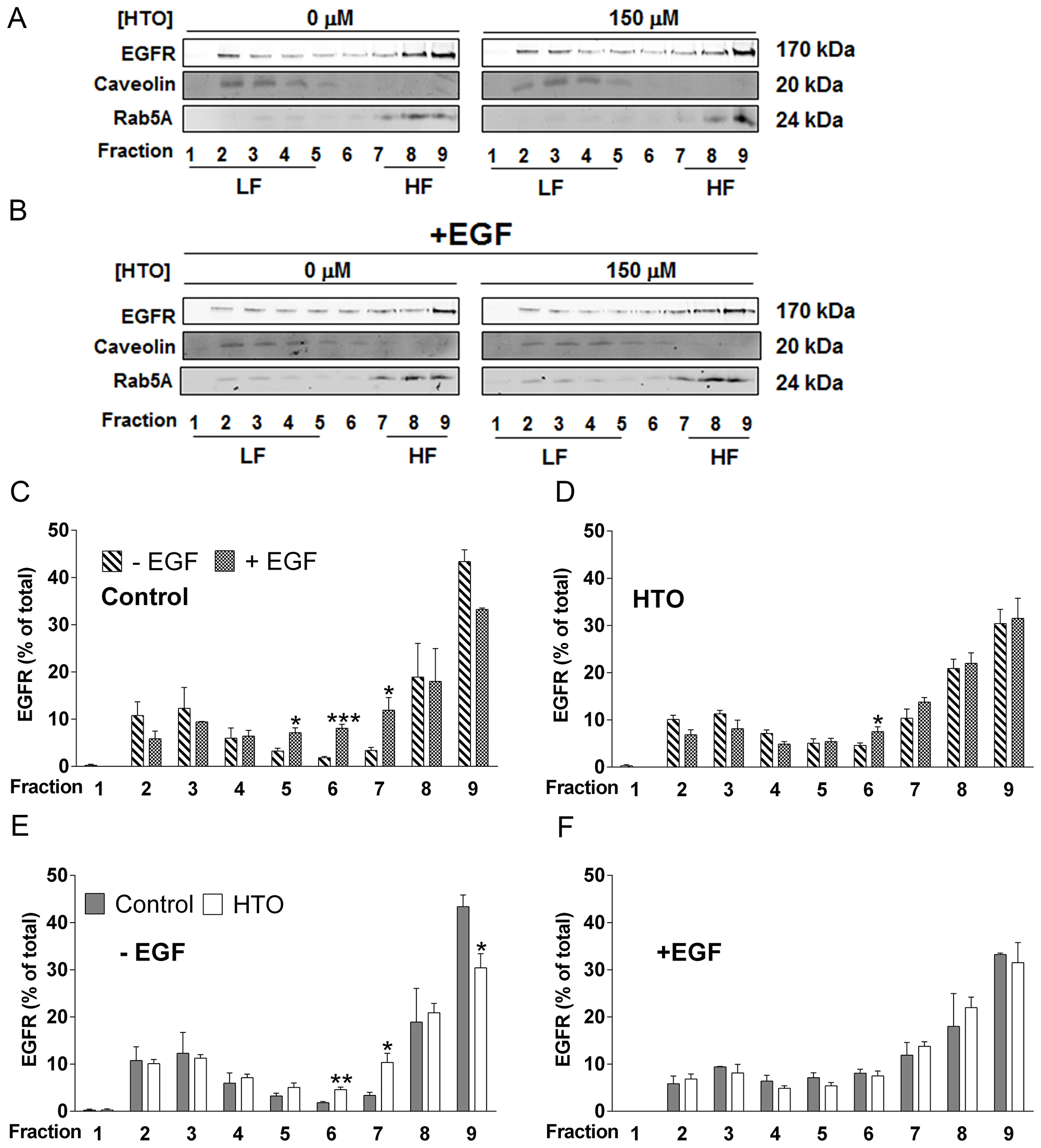 Effect of HTO on the membrane microdomain distribution of EGFR.