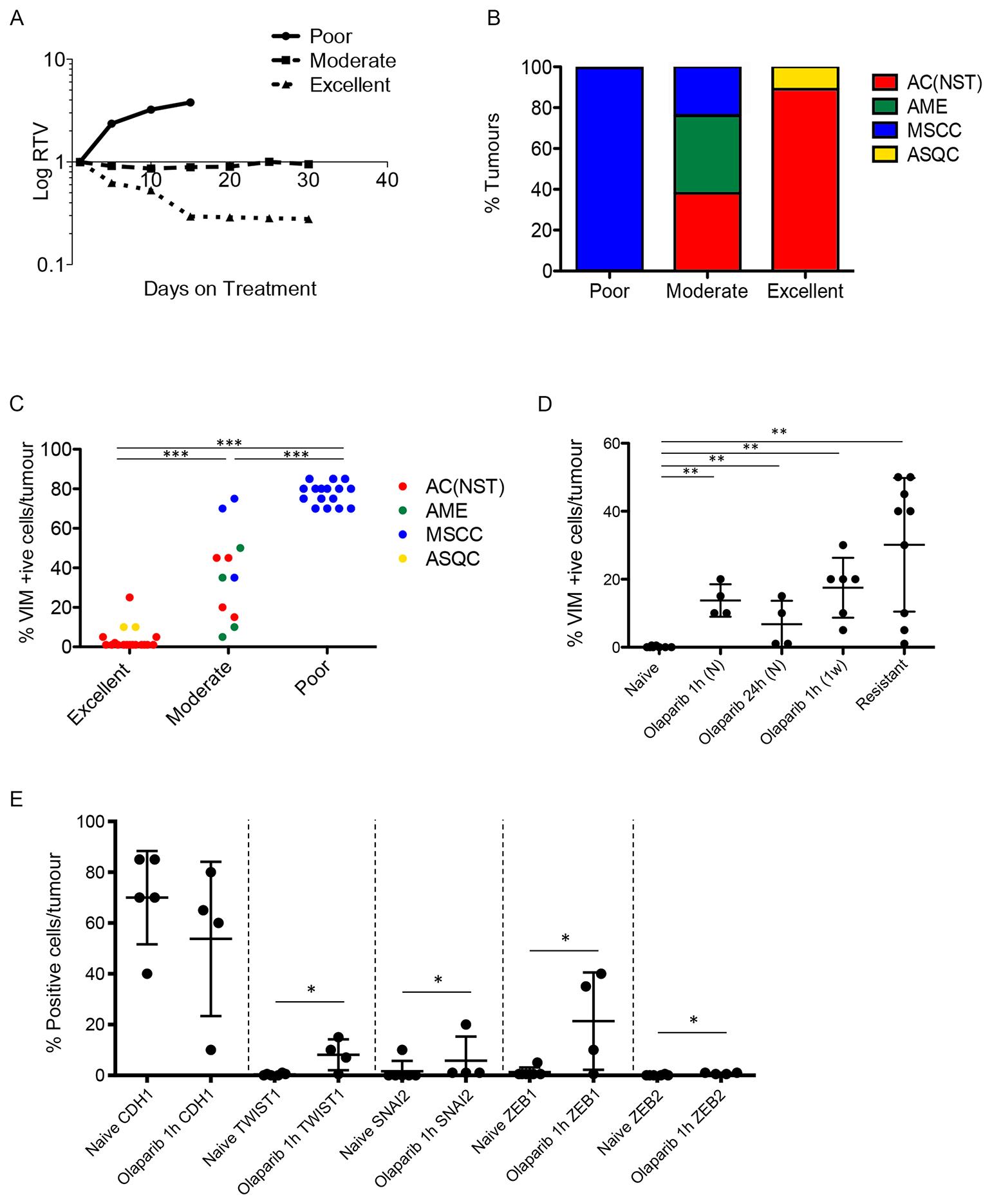 Olaparib response is correlated with tumour phenotype.