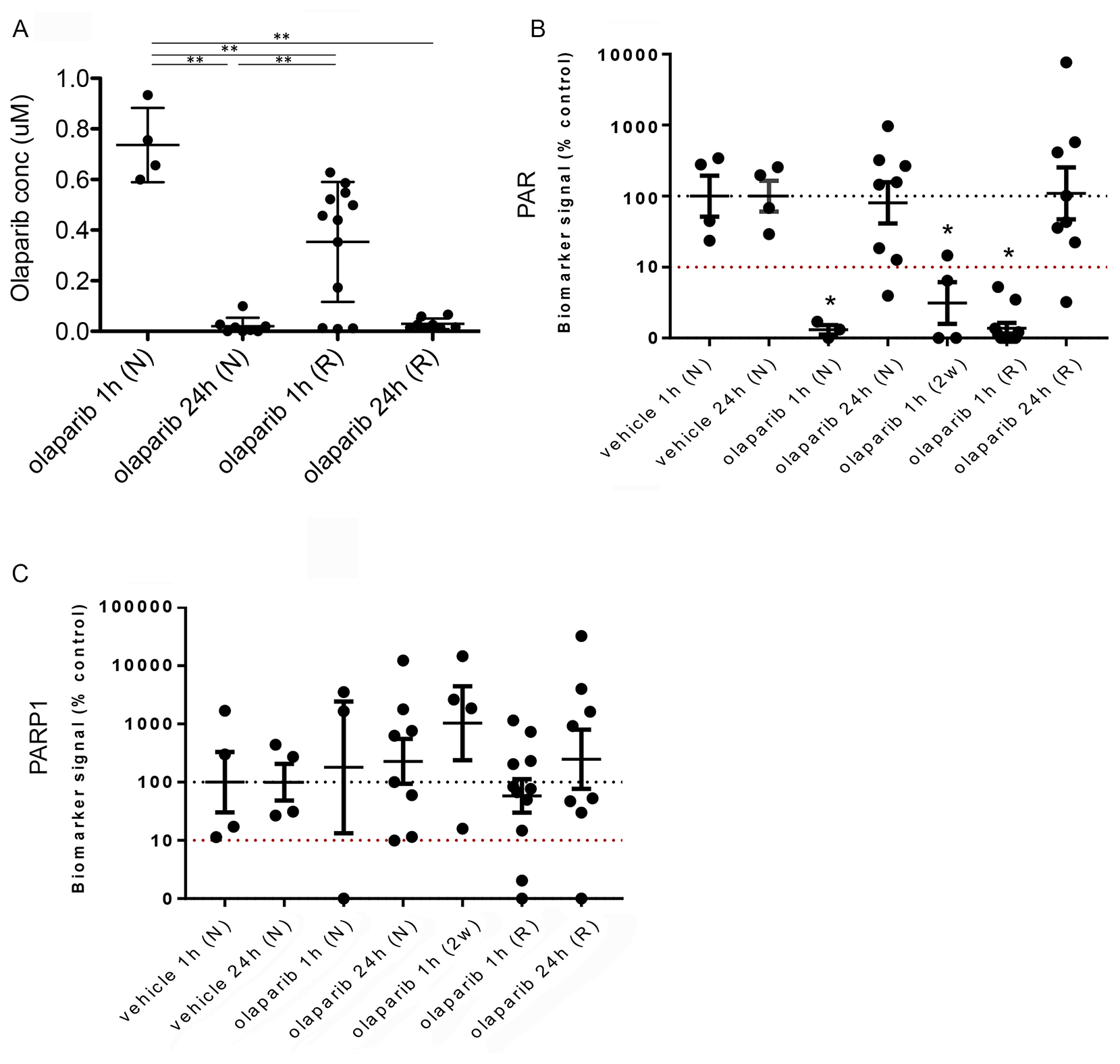 Reduced olaparib concentration in olaparib-resistant tumours does not correlate with increased PAR levels.