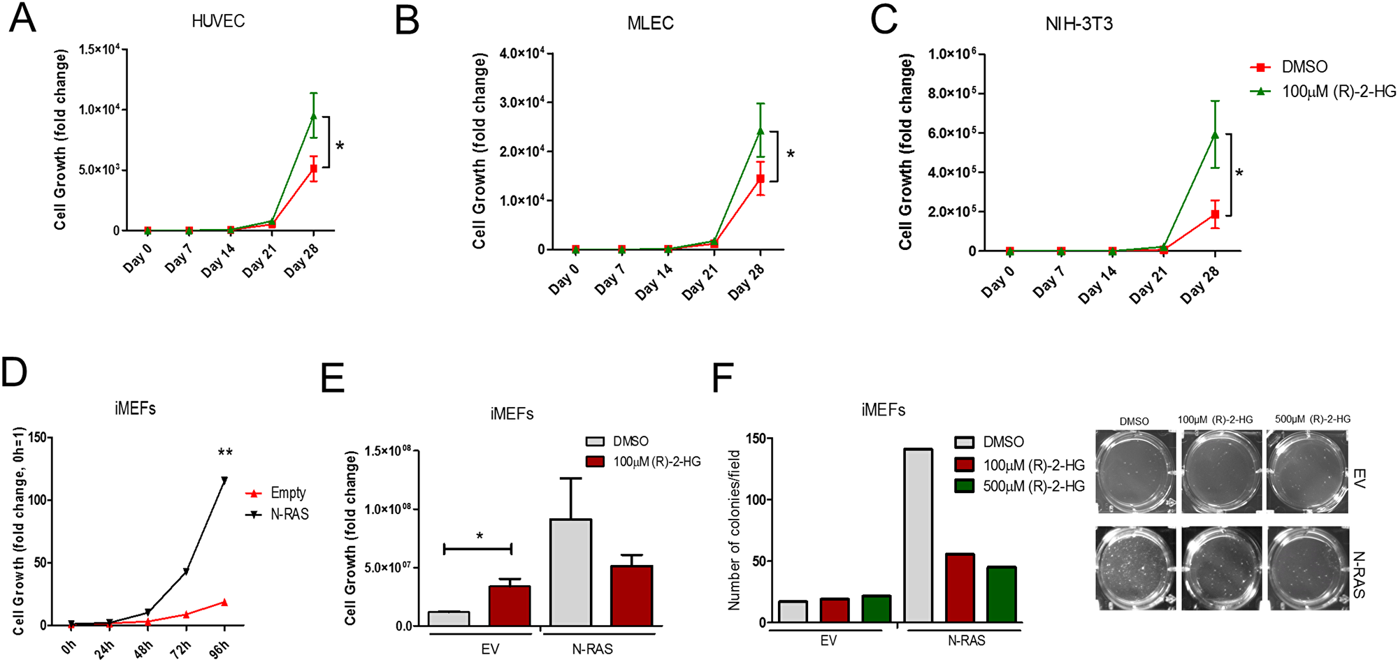 (R)-2-HG suppresses tumor colony formation following transformation with oncogenic Ras.