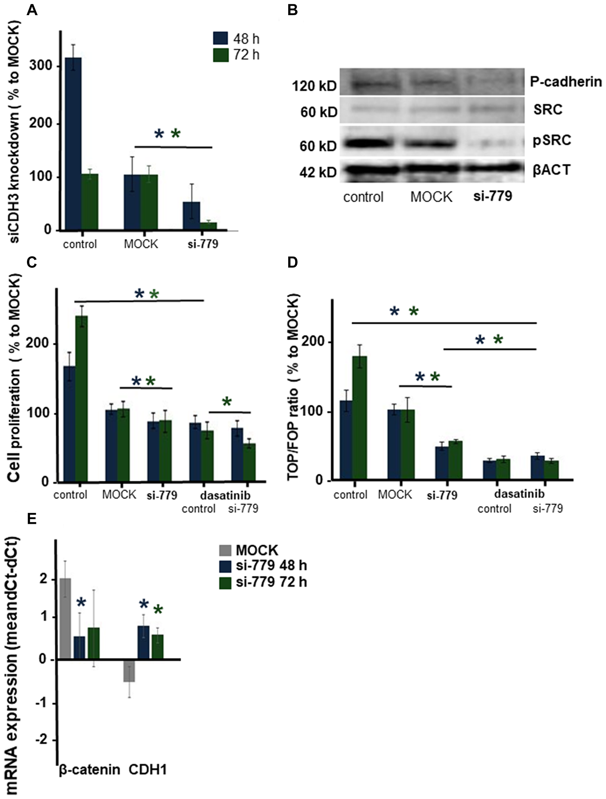 The effect of silencing CDH3 mRNA in CMT-U27 canine mammary tumor cells.