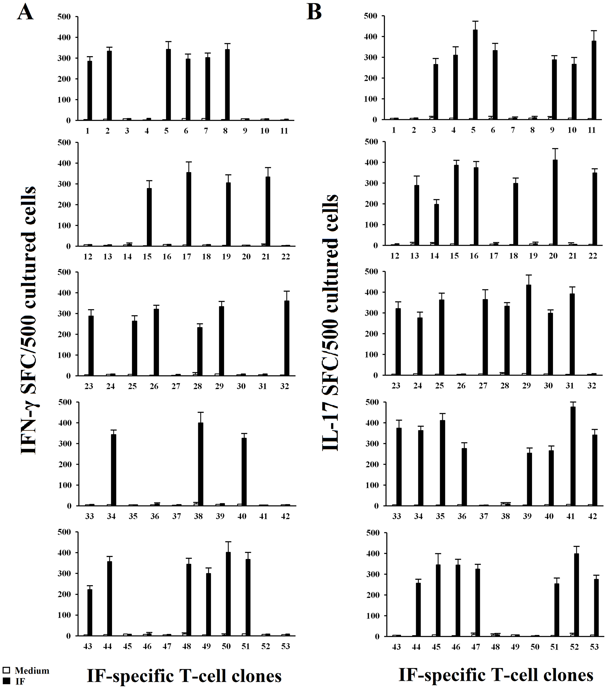 IF driven IFN-γ and IL-17 secretion by IF-specific gastric derived Th clones from PA patients.