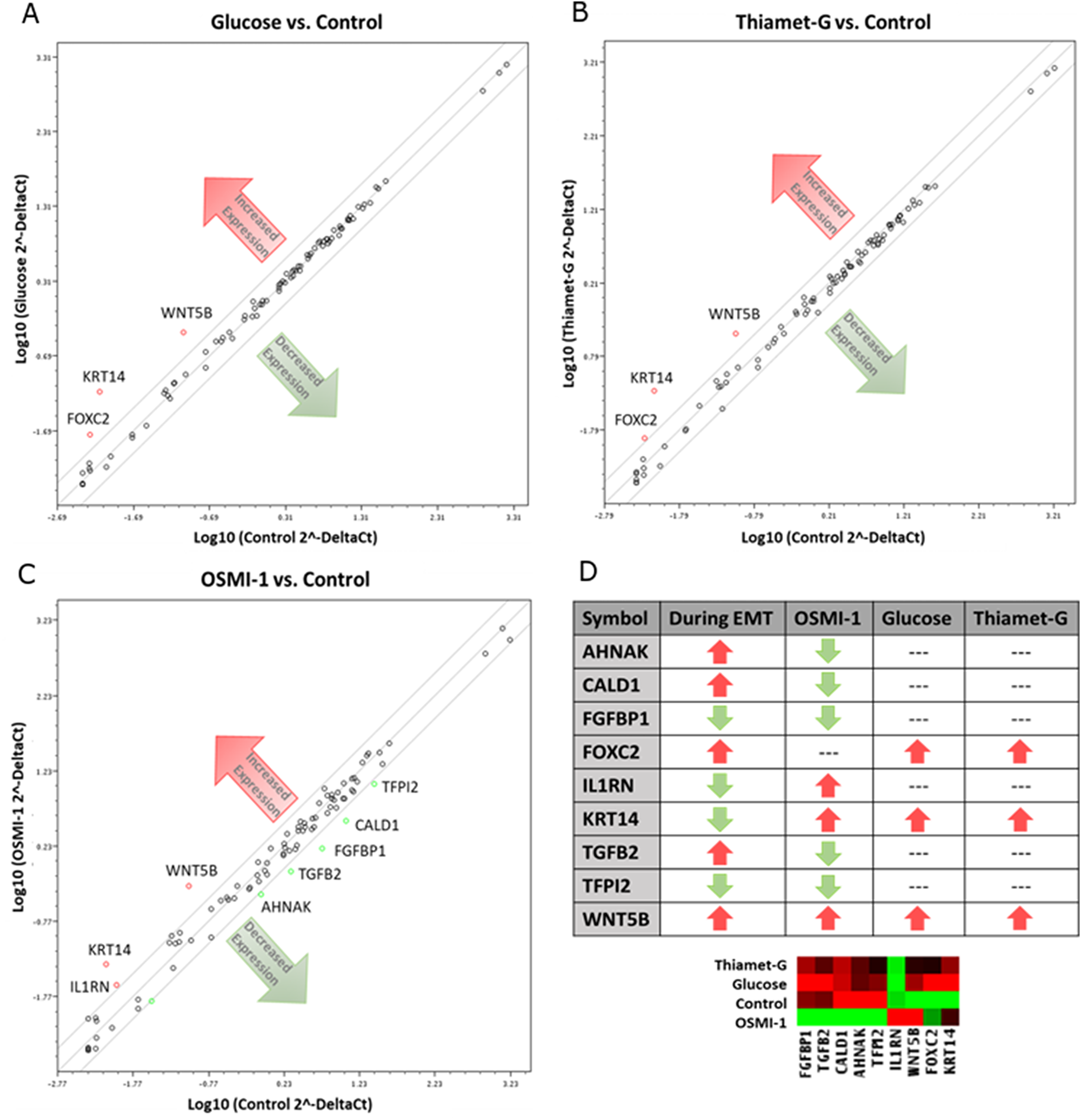 Disruption of O-GlcNAc alters gene expression in EMT related genes of Ishikawa cells.