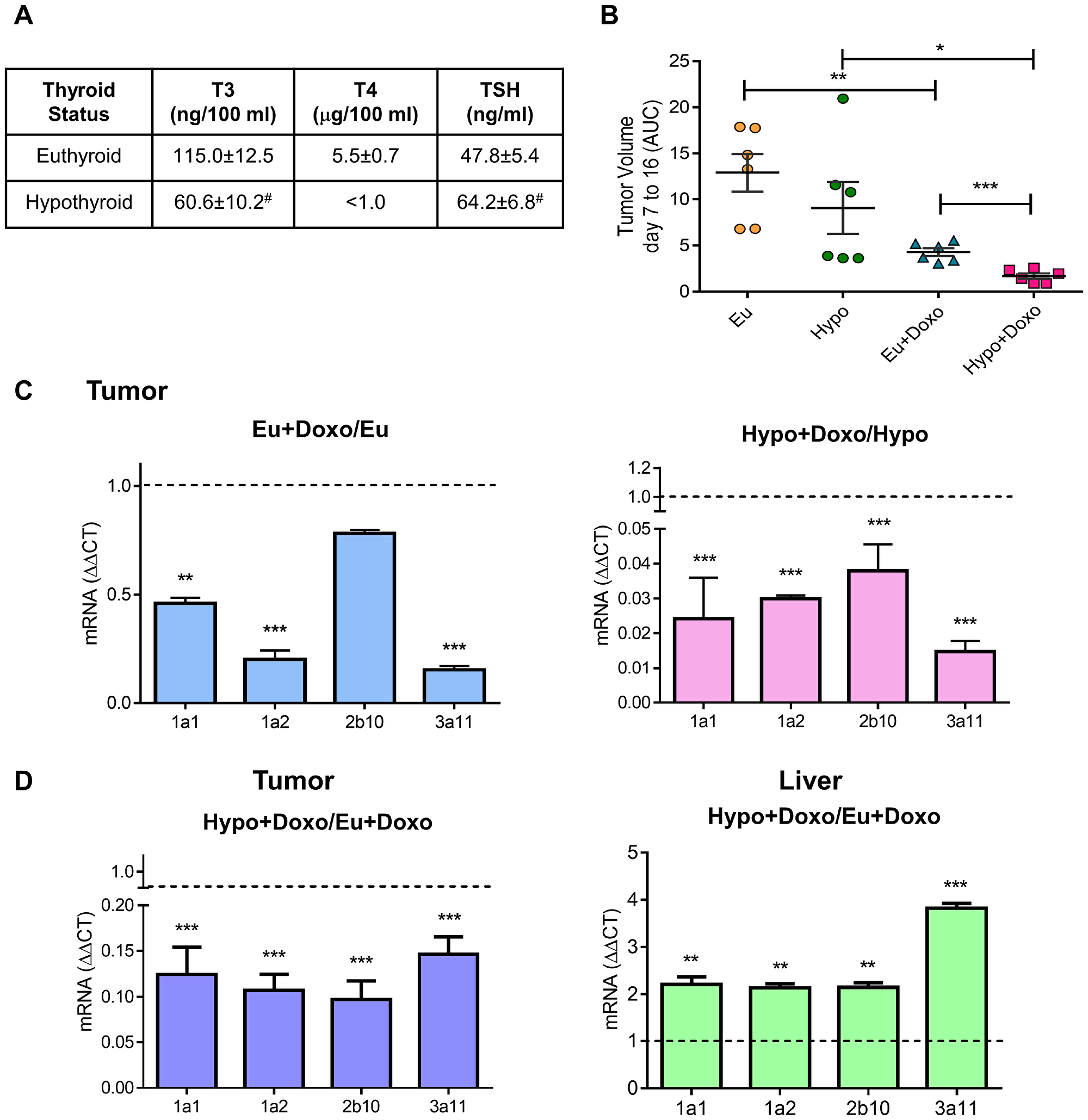 Effect of thyroid status on murine cytochrome P450 expression and tumor response to chemotherapy.