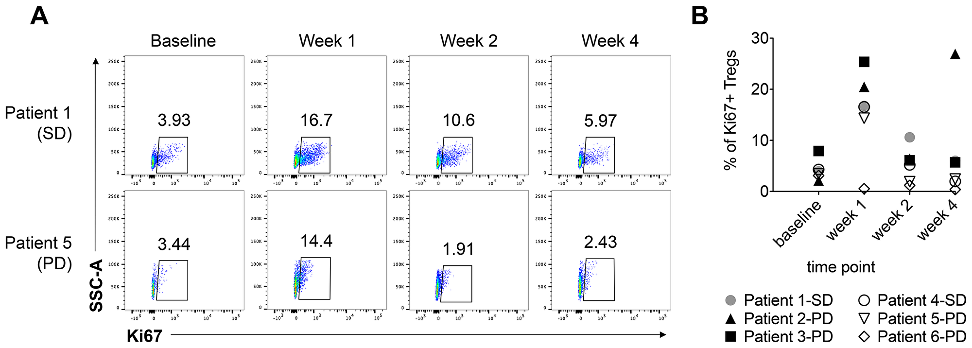 The percentage of Ki67+ regulatory T cells increases at 1 week post-radiation therapy and tremelimumab treatment.