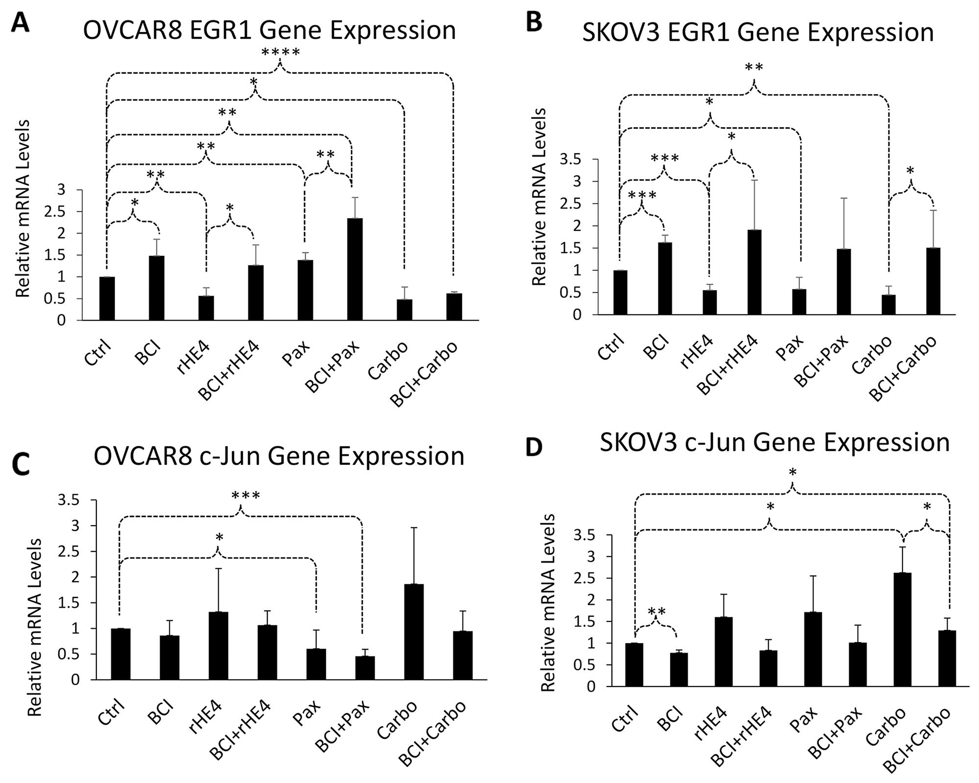 DUSP6 inhibition alters expression of ERK pathway responsive genes.