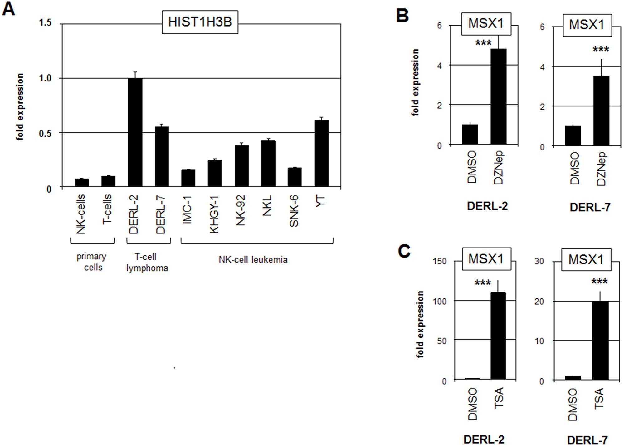 Analysis of mutated histone HIST1H3B.