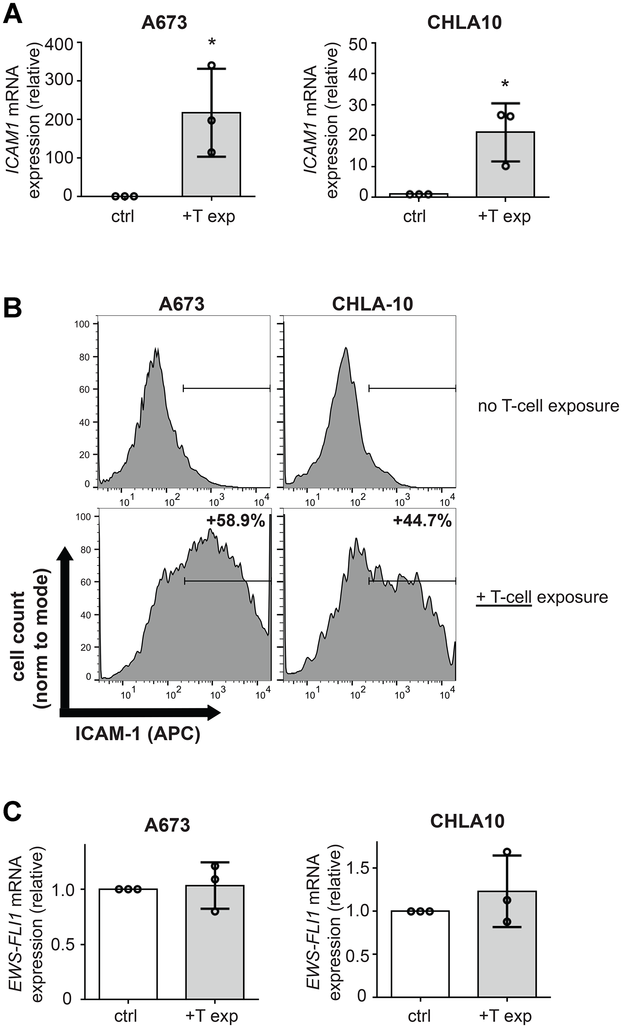 T-cell exposure leads to increased Ewing tumor cell ICAM-1 expression without changing EWS-FLI1 level.