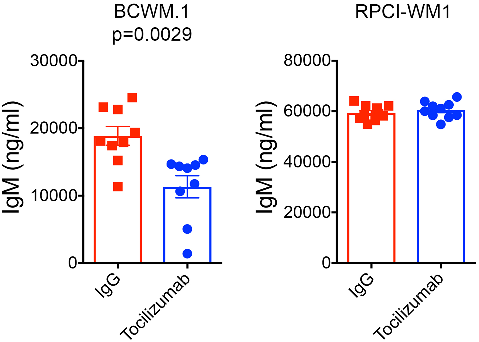 Tocilizumab reduces human IgM secretion in mice xenografted with BCWM.1 cells and stromal cells.