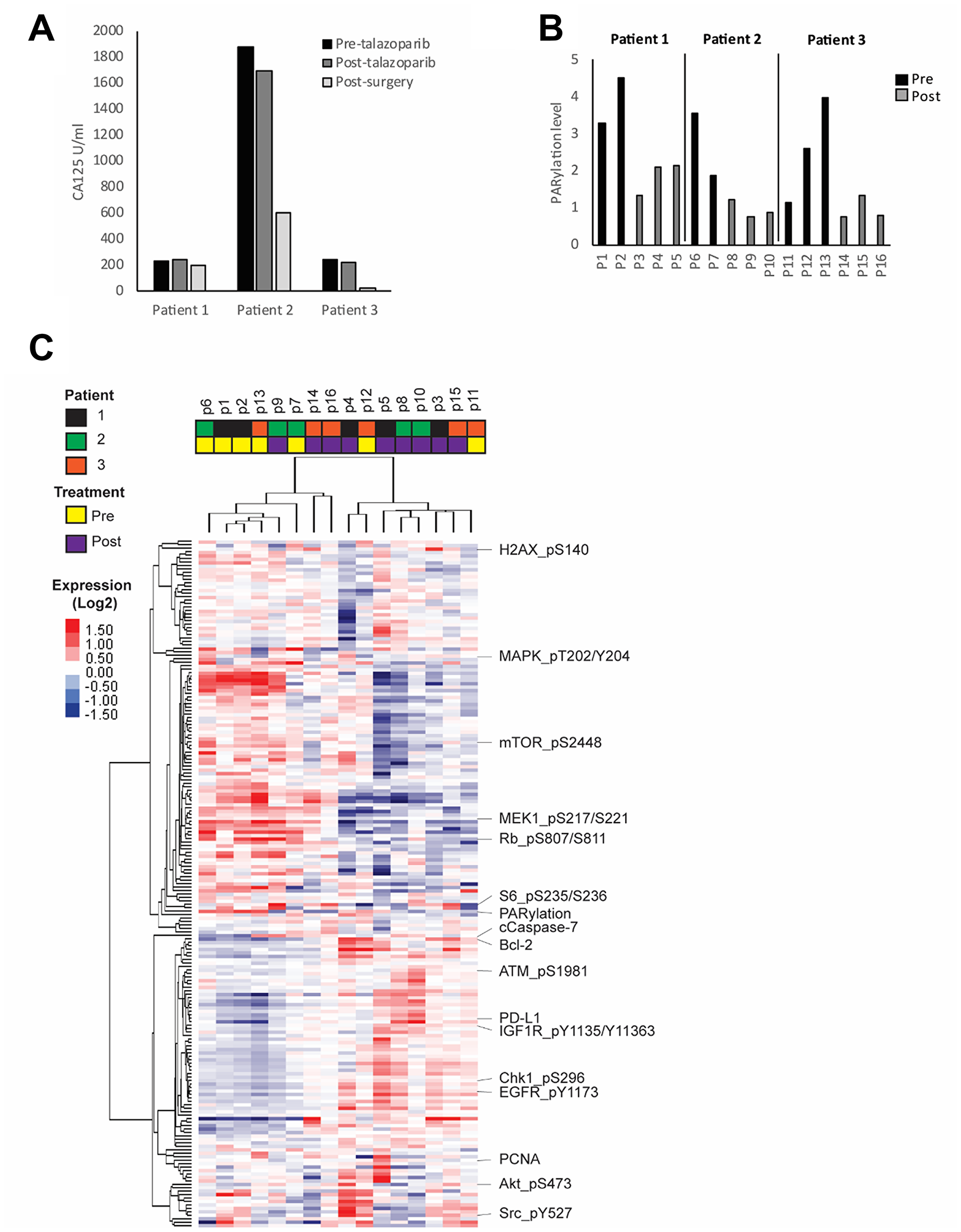 Oncotarget | Adaptive responses in a PARP inhibitor window