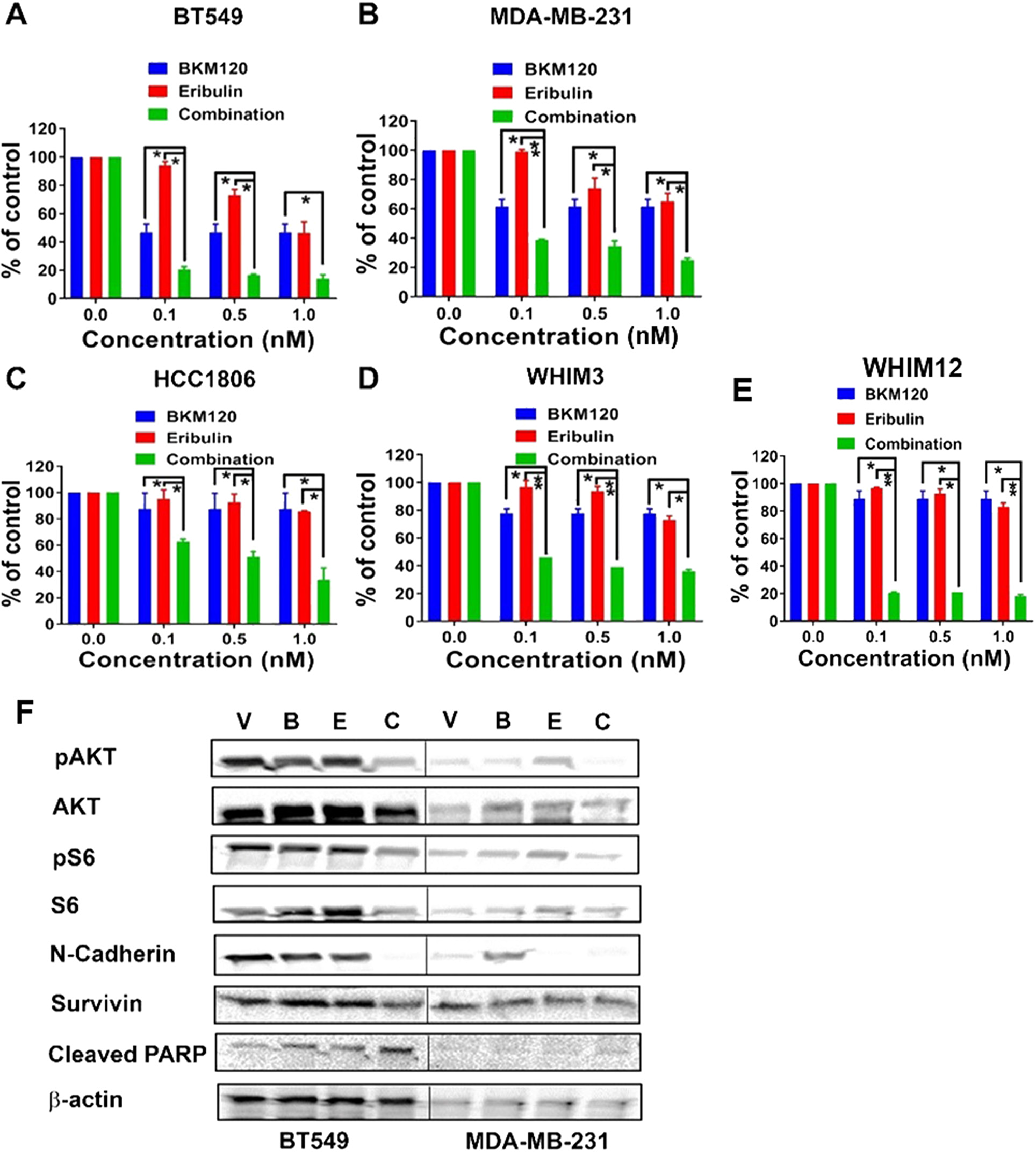 Eribulin in combination with BKM120 induces synergistic anti-tumor effect and target inhibition in TNBC cells in vitro.