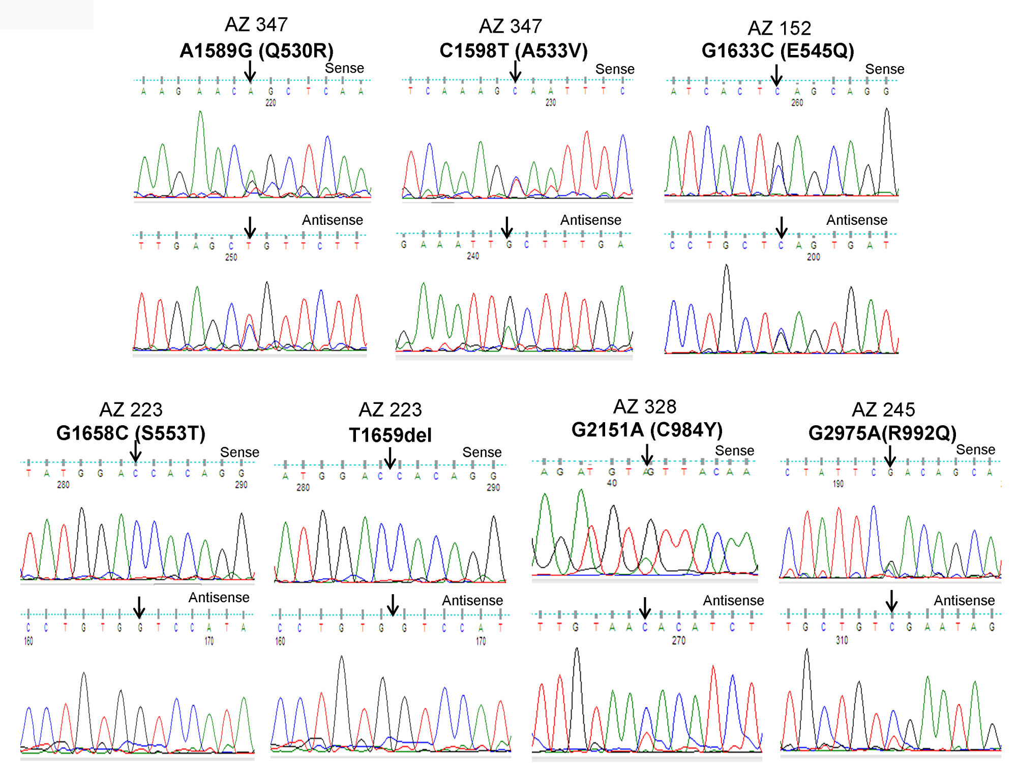 Identification of PIK3CA mutations in pediatric and adult DTCs.