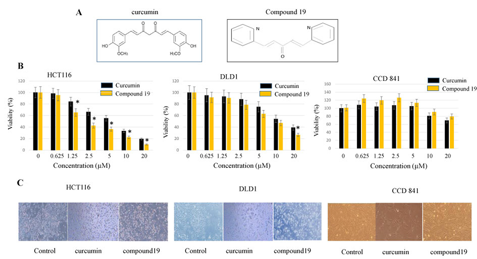 Anti-proliferative effects of curcumin and compound 19 on the human colorectal cancer cell lines HCT116 and DLD1.