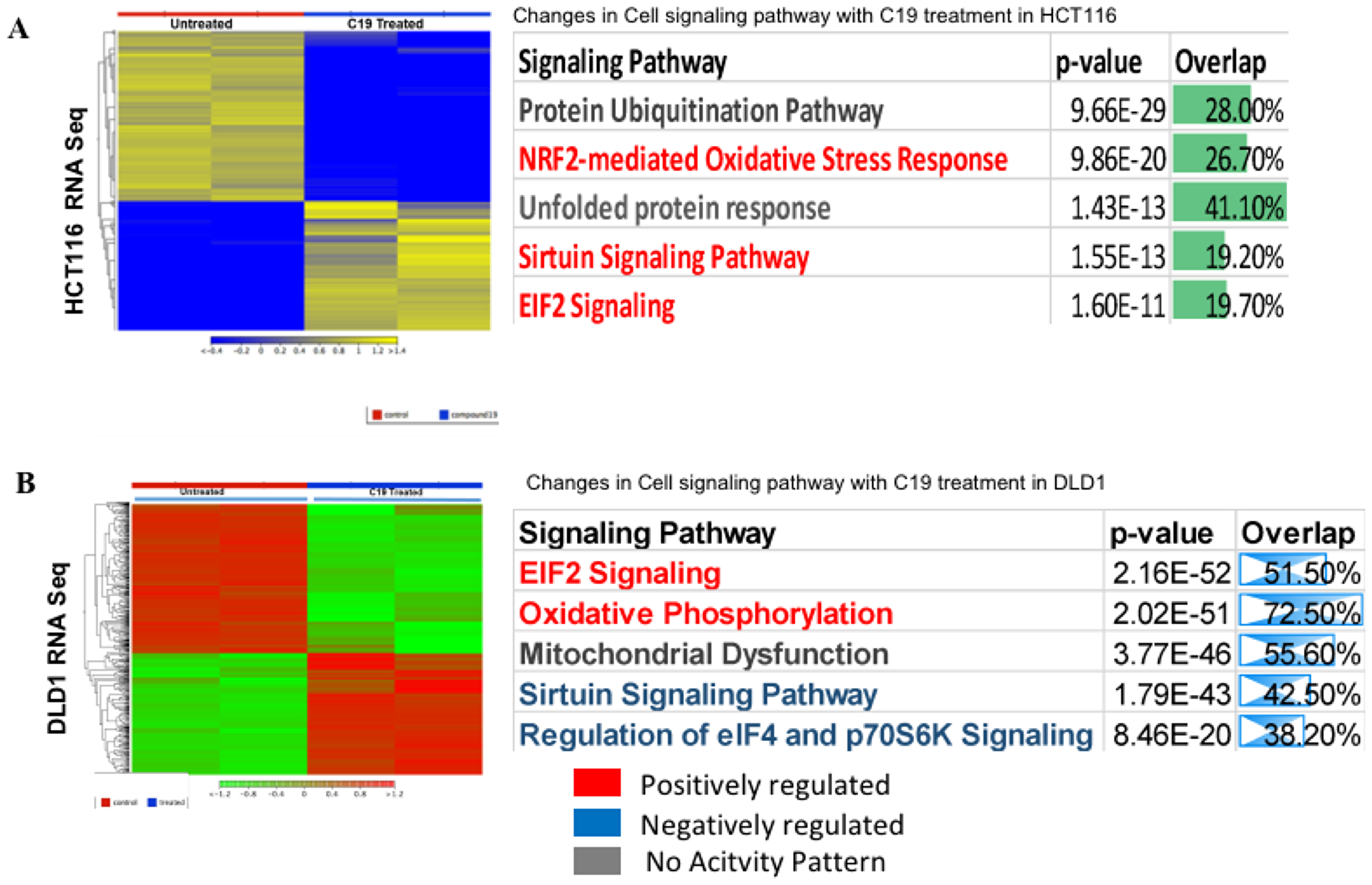 RNA-sequencing heat map and ingenuity pathway analysis.