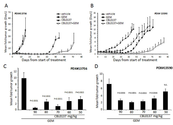 Effect of CBL0137 and gemcitabine on patient derived PDA xenograft models.