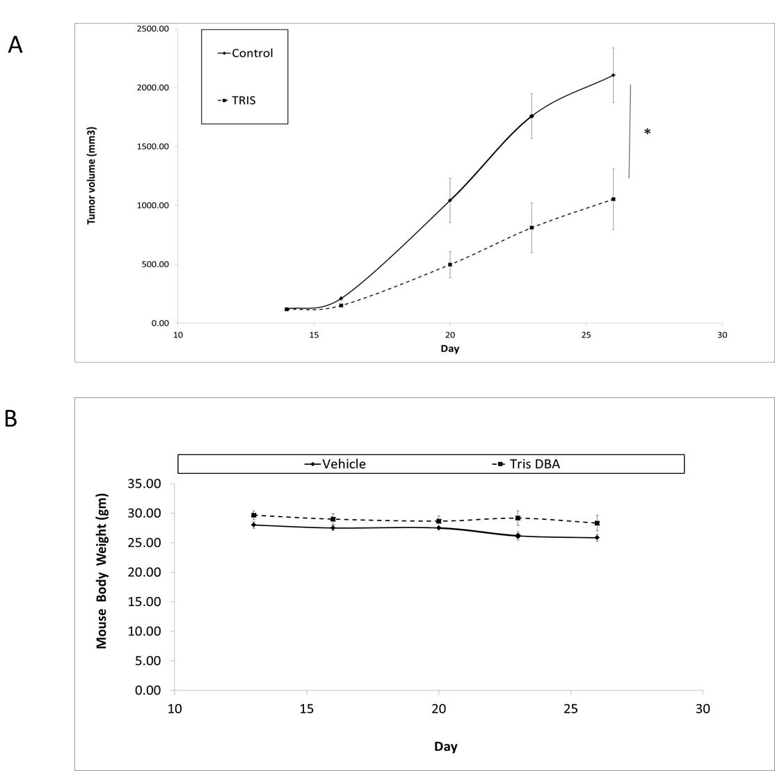 Tris DBA inhibits in vivo tumor growth in a GNAQ mutant xenograft model.