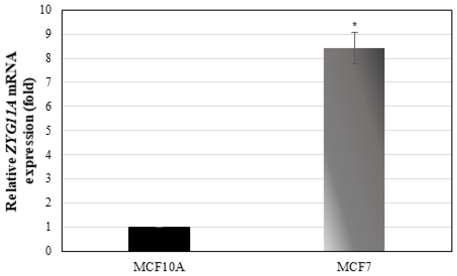 ZYG11A mRNA expression in breast cancer cell lines.