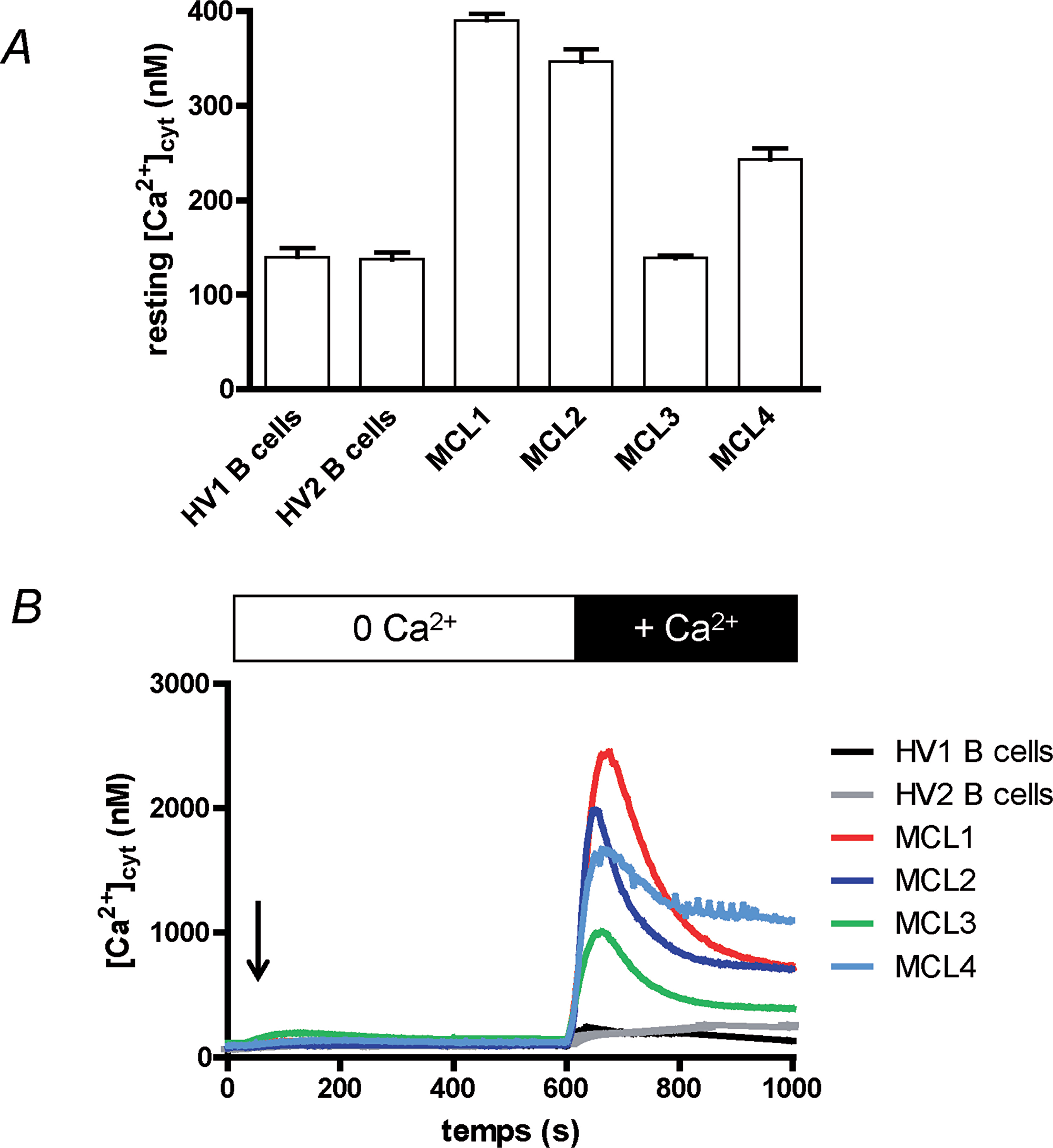 Ca2+ homeostasis of MCL lymphoblasts is different from circulating B cells'.