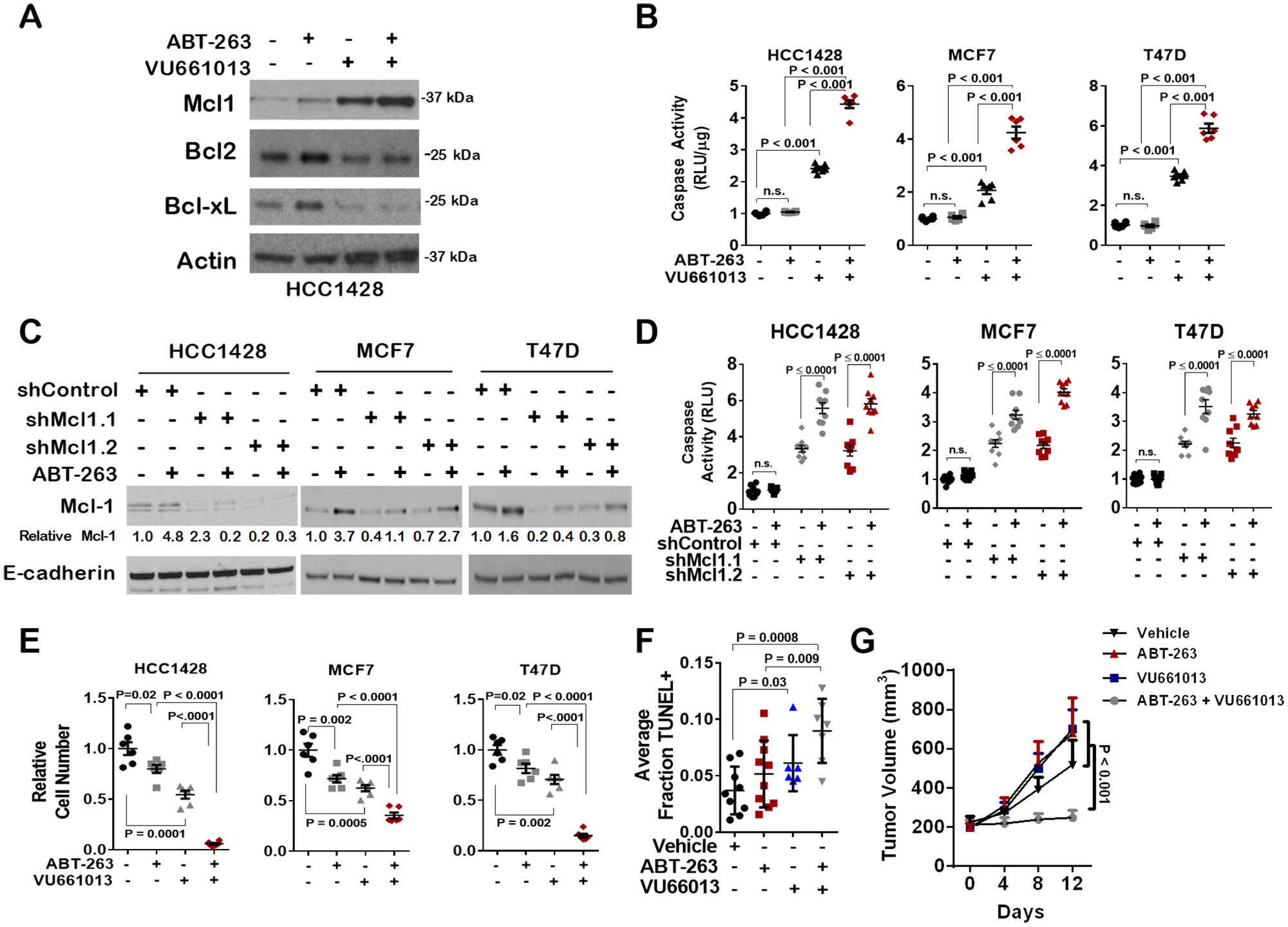 Increased Mcl-1 activity, but not expression, in response to ABT-263 is blocked by the novel Mcl-1 inhibitor VU661013.